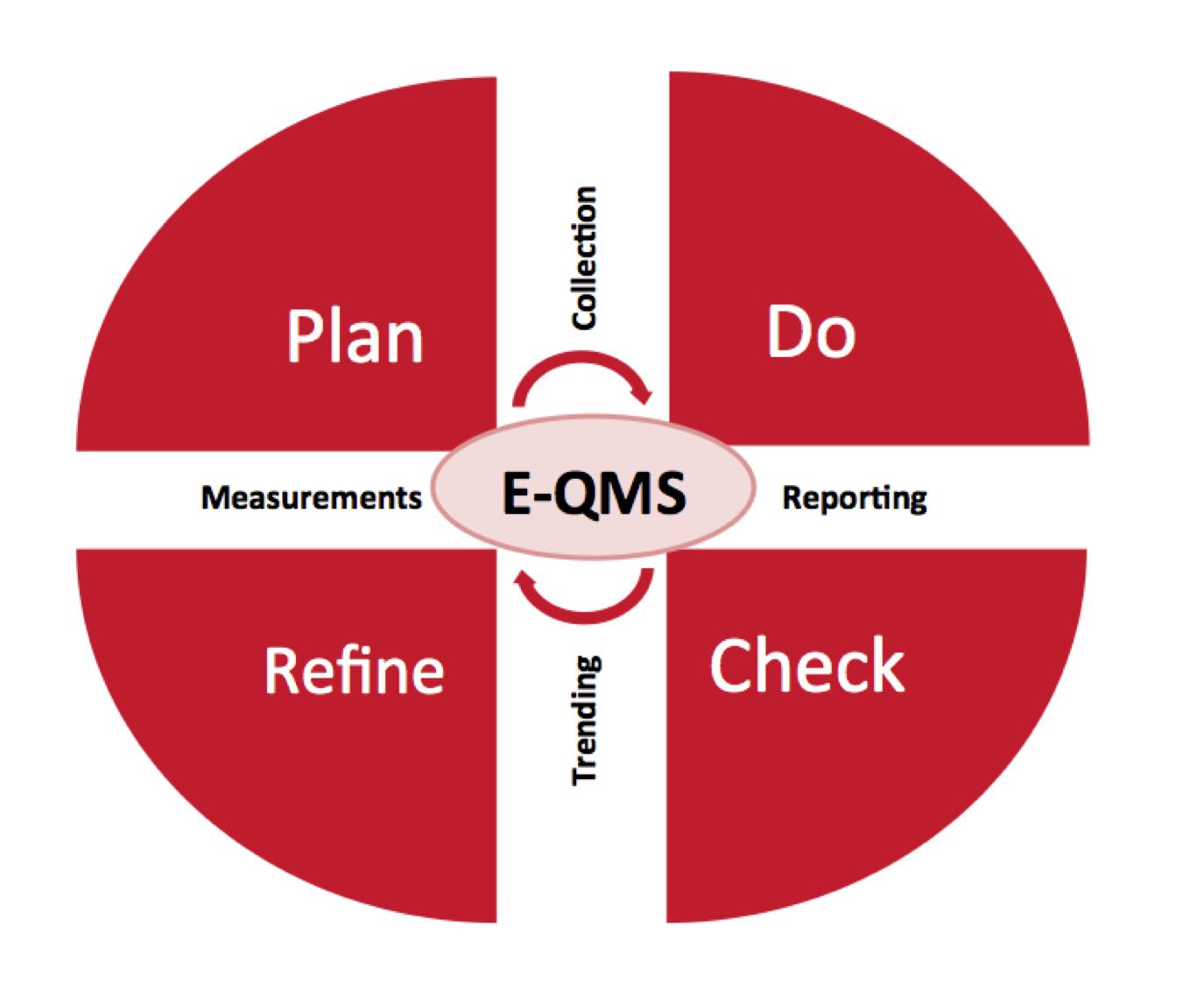QMS-Principles